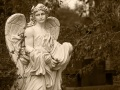 Angels of Glenwood Series
